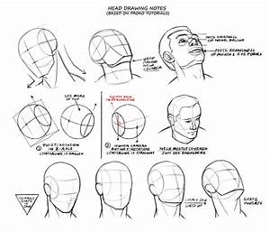 Will Burns  Head Drawing Guides