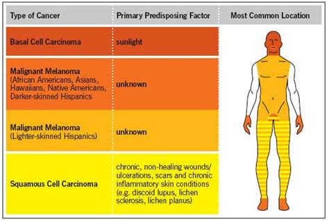 what causes different skin colors skin cancer and skin of color skincancer org