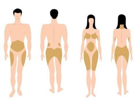 Hoe verlies je buikvet vrouwen