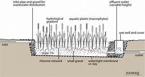 Horizontal Subsurface Flow Constructed Wetland From