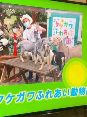 タケガワ ふれあい 動物園