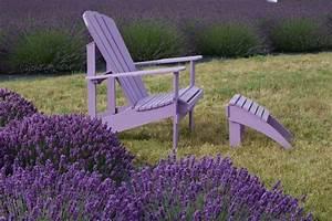 Lavendel Pflanzen Im Topf : lavendel pflege der gro e ratgeber ~ Frokenaadalensverden.com Haus und Dekorationen