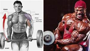 A Best Biceps Workout For Shirt Busting Arms   U2013 Fitness Volt
