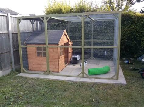 Cute Playhouse And Aviary For Rabbits