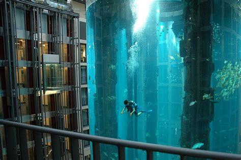 un aquarium g 233 ant dans votre h 244 tel infotravel fr