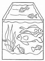 Coloring Aquarium Fish Pages Animals Advertisement sketch template