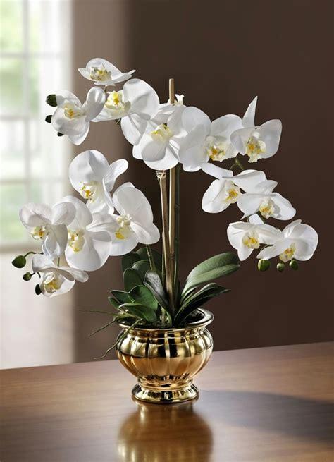 kunst orchidee im topf orchidee im topf kunst textilpflanzen brigitte st