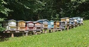 Comment Faire Une Ruche : 6 choses savoir avant d 39 installer une ruche dans son jardin ~ Melissatoandfro.com Idées de Décoration