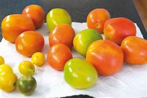 Wann Ist Knoblauch Reif : tipp gr ne paradeiser tomaten einfach nachreifen lassen ~ Lizthompson.info Haus und Dekorationen