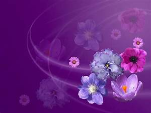 Purple and Pink Flowers Background | Free Backgrounds for ...