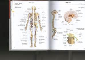 Human Body Parts Dictionary