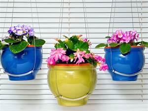 16 Hanging Flower Pot Plant Ideas To Enhance Your Veranda