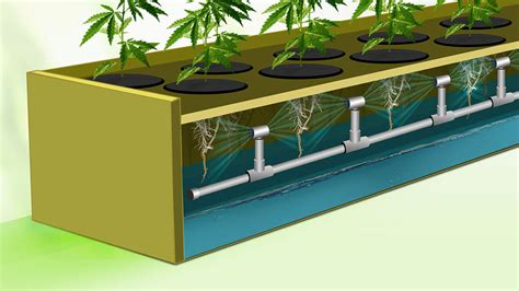 Easy Diy Aeroponics System For Growing Cannabis Indoors