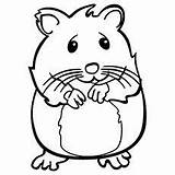 Hamster Coloring Pages Hamsters Sheets Pet Printable Nervous Draw Stake Library Crafts Toddler Printables Welcome sketch template
