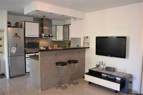 appartement cuisine americaine a vendre appartement t3 tres coquet avec jardin marseille