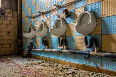 urinstein entfernen toilette urinstein entfernen wie sie