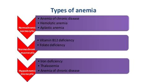 Pharmacology Of Anemia