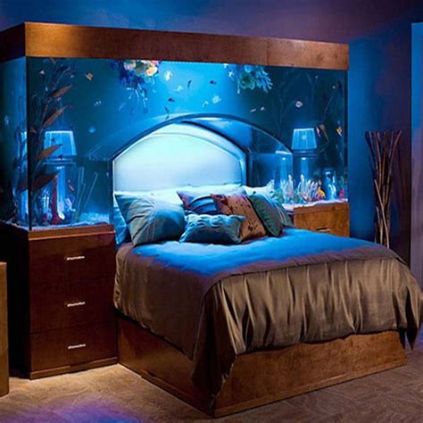 tips to maintain aquarium and fish at home slide 1 ifairer
