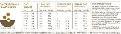 How Much Cat Food Per Day For Kitten Food