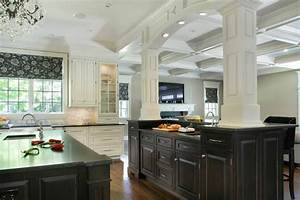 Black and White Kitchen Cabinets contemporary kitchen new york 919