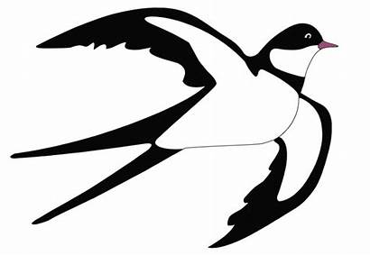 Swallow Clipart Spring Transparent Yopriceville Previous