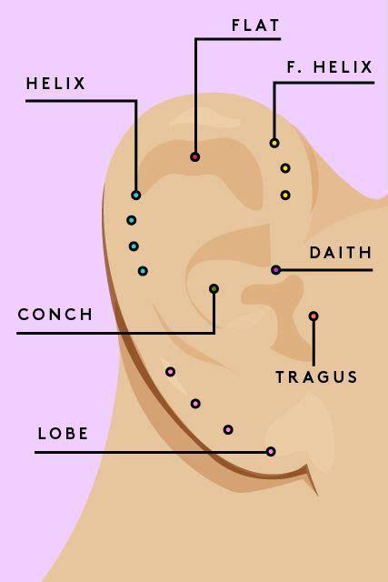 Lobe Ear Piercing Diagram by 9ct Gold Plated Drusy Small Stud Earrings In 2019