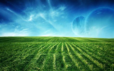 Green Field Screen Wallpaper Hd Wallpapers Download Free