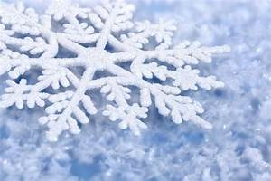 Winter Snow Flakes Winter HD Wallpaper | 3D & Abstract ...