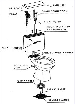Parts Of A Water Closet by Toilet Maintenance