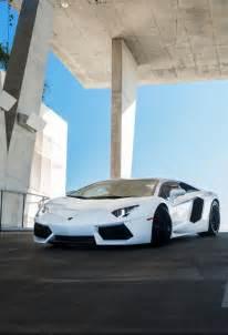 Lamborghini Aventador Car Girls
