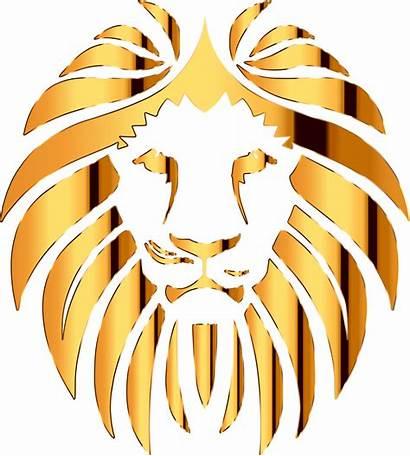 Lion Clipart Golden Transparent Background Crown Gold