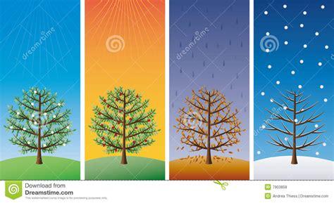seasons trees royalty  stock  image