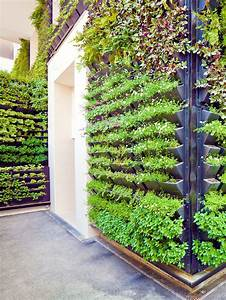 How, To, Build, A, Vertical, Garden, At, Home