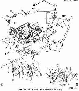 2002 Ls1 Engine Wiring Diagram