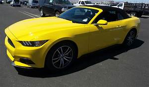 Triple Yellow 2017 Ford Mustang EcoBoost Convertible - MustangAttitude.com Photo Detail