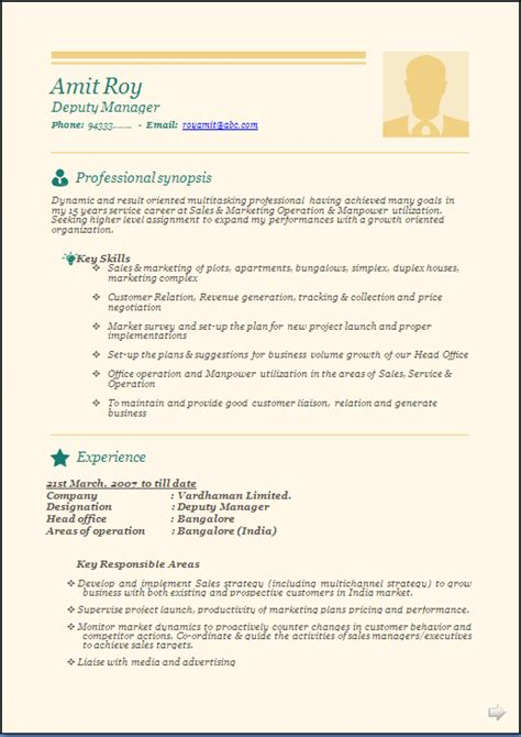 professional beautiful resume sample  experienced