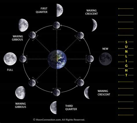 asciencemishmash phases of the moon