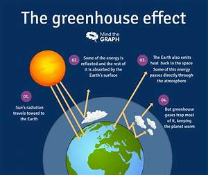 Diagram Of The Greenhouse Effect : carbon cycle and greenhouse effect a scientific infographic ~ A.2002-acura-tl-radio.info Haus und Dekorationen