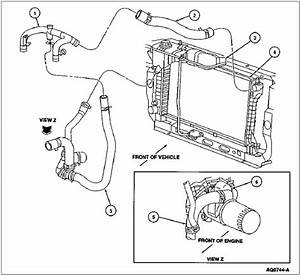 Radiator Hose Options - Need Some Help