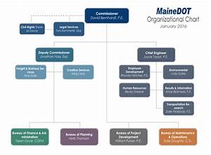 Mainedot Organizational Chart