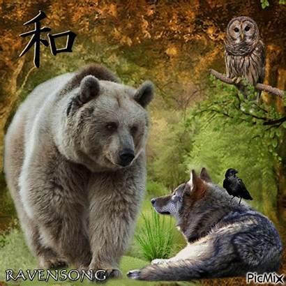 Spirit Animals Guides Picmix
