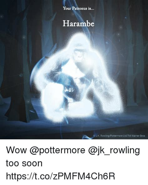 Soon Tm Meme - your patronus is harambe jk rowlingpottermore ltdtm warner bros wow too soon httpstcozpmfm4ch6r