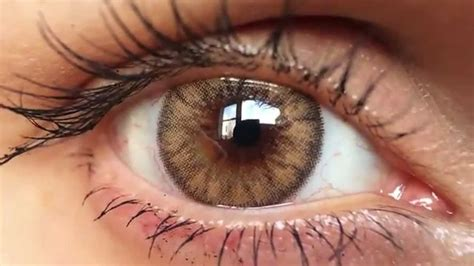 brown colored contacts desio caramel brown coloured contact lenses up hd