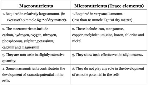 mineral nutrition biologyisc