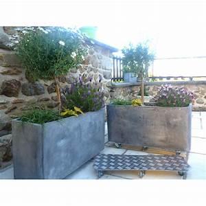 Jardiniere Sur Roulette : support de plantes roulettes alu jardini re jardin et saisons ~ Farleysfitness.com Idées de Décoration