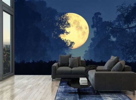 Wall Murals Sky by Golden Moon Sky Forest Wall Mural Photo