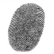 Fingerprint PNG Transparent Images | PNG All