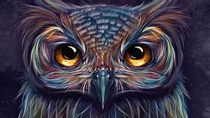 Owl, Colorful, Art, 5k, Hd, Artist, 4k, Wallpapers, Images