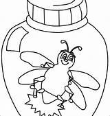 Coloring Bug Bugs Inchworm Vw Beetle Preschool Printable Pill Getcolorings Getdrawings Sheet Sheets Colorings sketch template