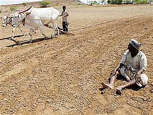 34 farmers, farm labourers commit suicide every day in ...